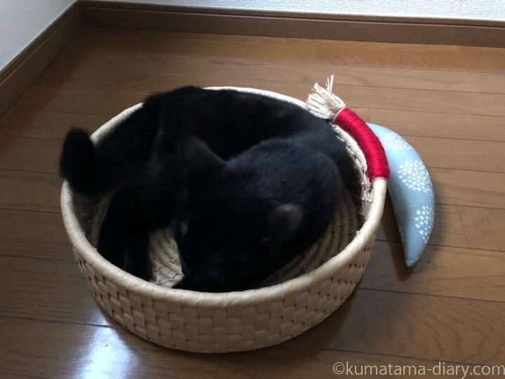 鍋型ベッドふみお
