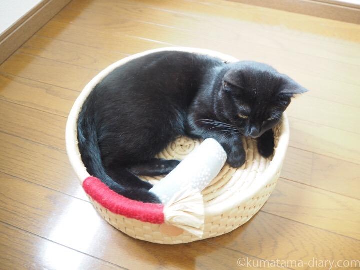 ロフト鍋型ベッドふみお