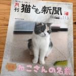 『月刊猫とも新聞』2019年11月号の特集は「ねこさんの名前」です