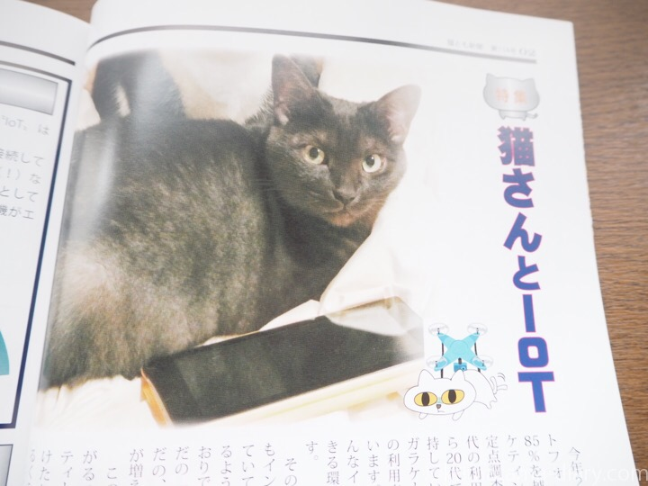 猫さんとIoT