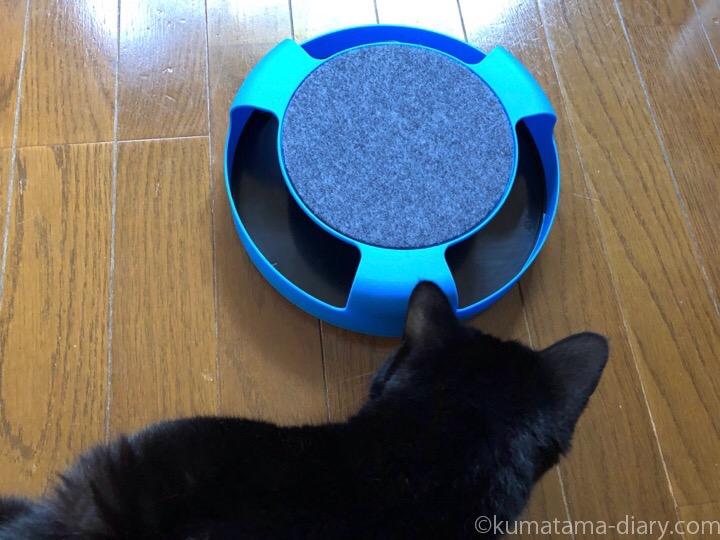フライングタイガー猫用おもちゃとふみお