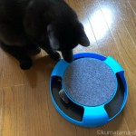 フライングタイガーの猫用おもちゃ「逃げるネズミ」