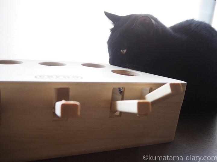 Lemonda 猫おもちゃ モグラ叩きとふみお