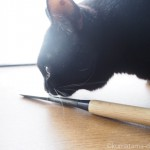 初めて買った木彫りノミをチェックする猫