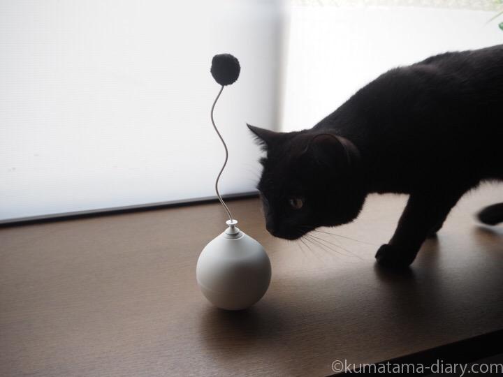 pidan 電動猫おもちゃボールとふみお