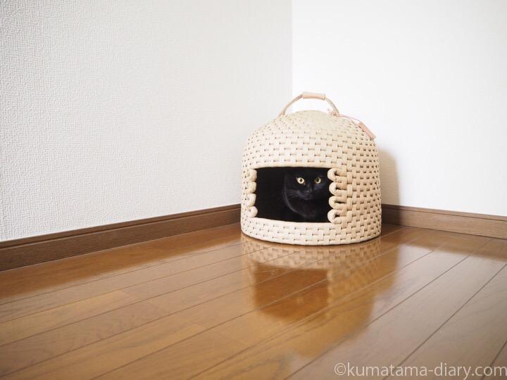 ロフト猫ちぐら