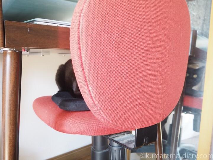 椅子の上のふみお