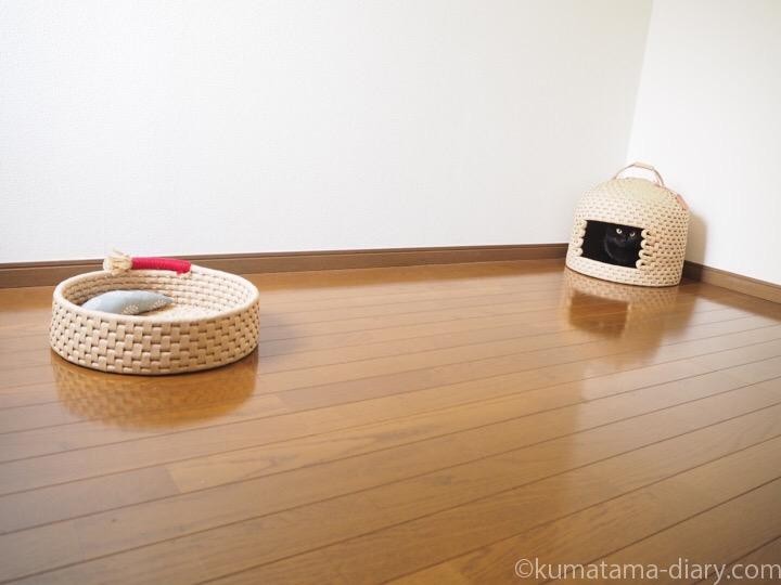 ロフト鍋型ベッドと猫ちぐら