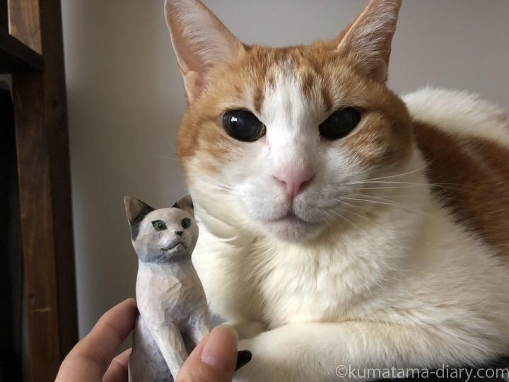 たまきと白黒猫木彫り猫