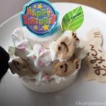 猫の誕生日を「PatissiereSERI(パティシエール・セリ)」の猫用ケーキでお祝い♪