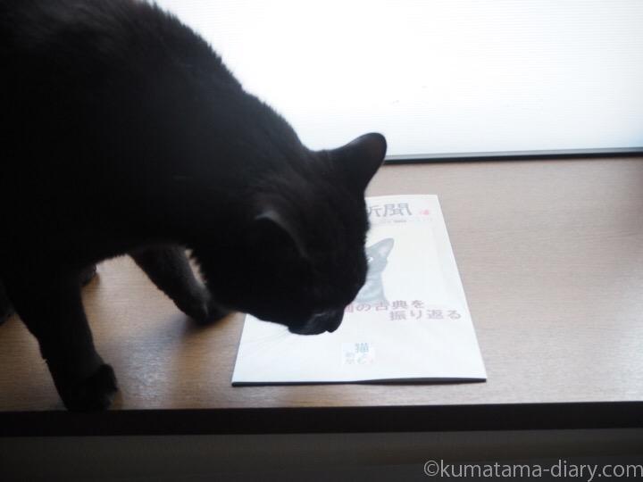 月刊猫とも新聞とふみお