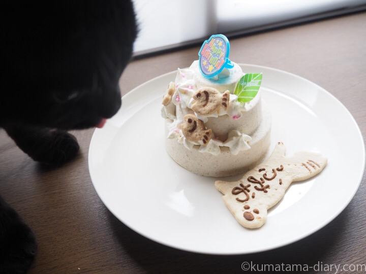 パティシエール・セリのケーキをなめるふみお