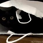 【月命日】テレビ台の下が好きな猫