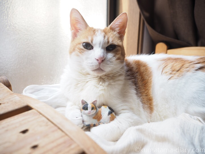 たまきと木彫り三毛猫