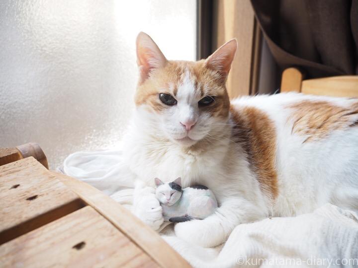 たまきと木彫り白黒猫
