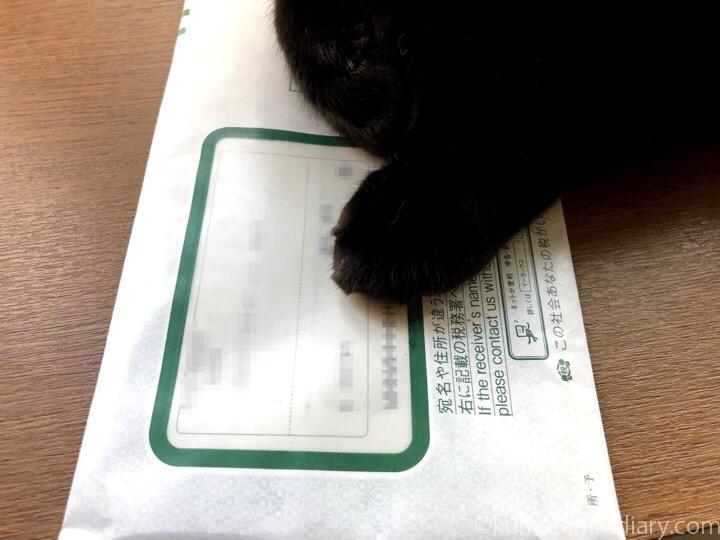 郵便物の上のふみお