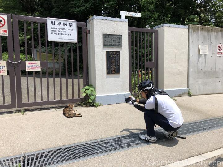 植物園の猫さんと彼