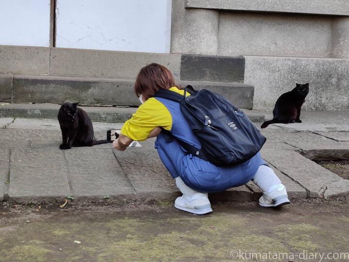 黒猫さんを撮る私