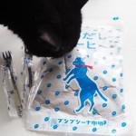 「プシプシーナ珈琲」の水だしコーヒーと猫