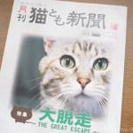 『月刊猫とも新聞』2020年8月号の特集は「大脱走」です