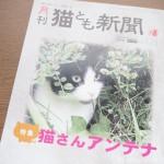 『月刊猫とも新聞』2020年9月号の特集は「猫さんアンテナ」です