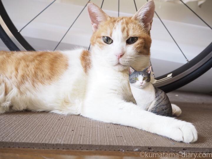 たまきと木彫り猫