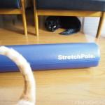 ストレッチポールと猫たち