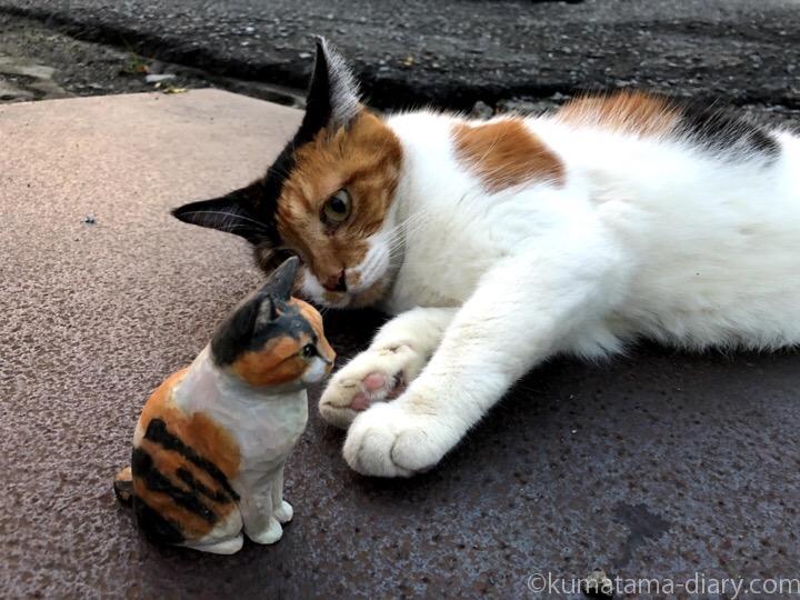 三毛猫さんと木彫り猫