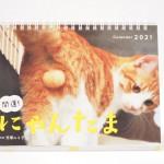 「開運! にゃんたまカレンダー」を買いました
