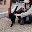 黒猫さんをなでなで
