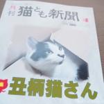 『月刊猫とも新聞』2021年2月号の特集は「丑柄猫さん」です