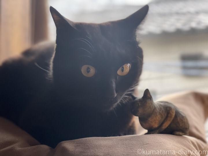 ふみおと木彫り猫