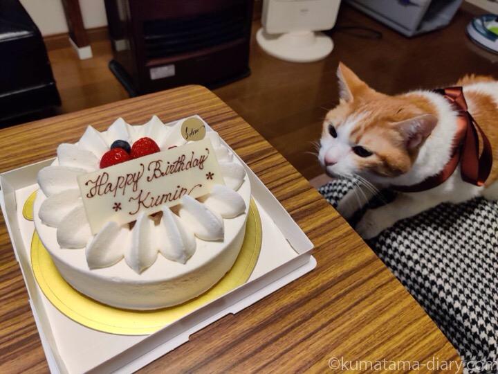 ケーキとたまき