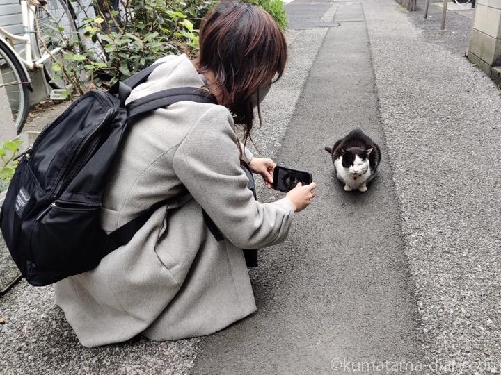 私と黒白猫さん