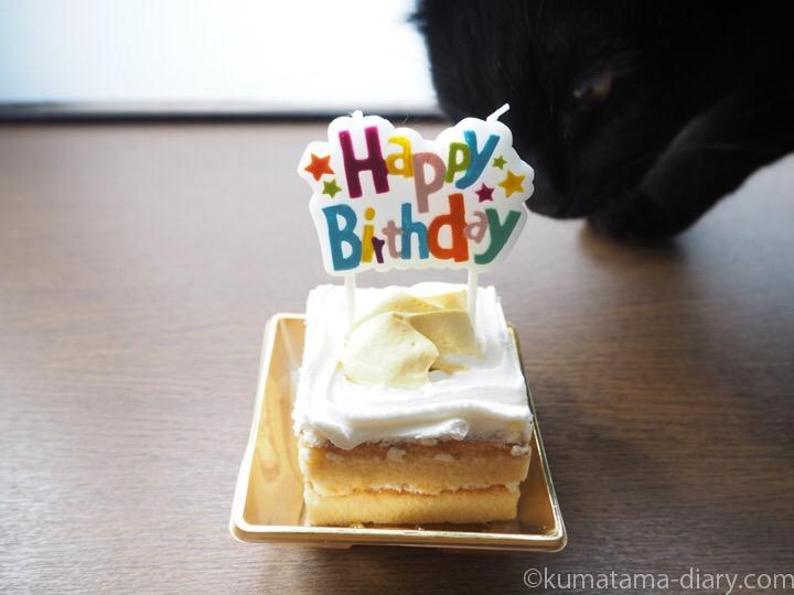 ふみおとケーキ
