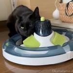 「cat it プレイサーキット」にスリスリする猫