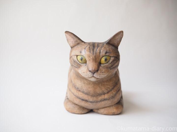香箱座りのキジトラ猫さん
