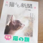 『月刊猫とも新聞』2021年7月号の特集は「猫の額」です