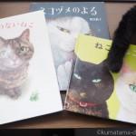 ねこが魅力的な町田尚子さんの絵本