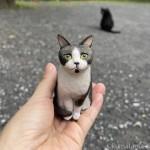 黒白猫さんと木彫り猫の写真を撮りました