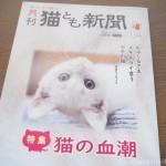 『月刊猫とも新聞』2021年8月号の特集は「猫の血潮」です