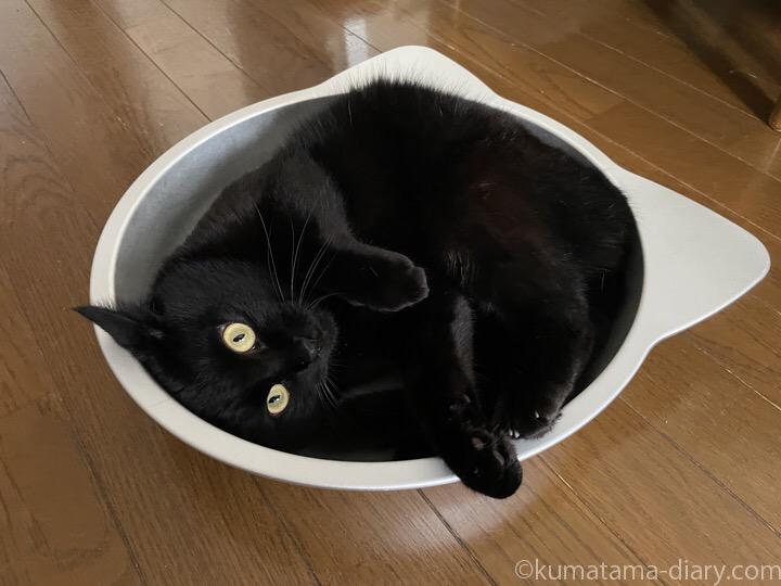 猫鍋ふみお