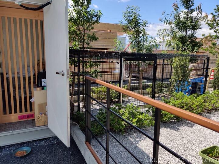 猫専用ハウスの庭