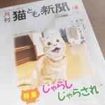 『月刊猫とも新聞』2021年10月号の特集は「じゃらし じゃらされ」です