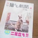 『月刊猫とも新聞』2021年9月号の特集は「二足立ち‼」です